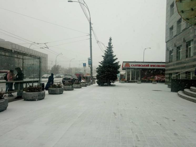 Селфі без верхнього одягу та відкопування авто: Що у Києві накоїв перший сніг