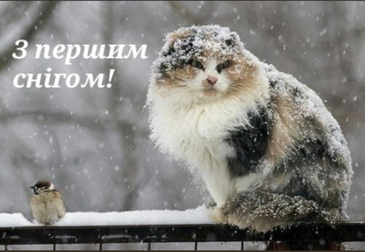 """Вхурделило: Українці розпочали флешмоб """"Перший сніг"""""""