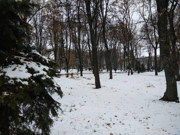 Завірюха-заметіль: Якої погоди чекати у Черкасах 27 листопада