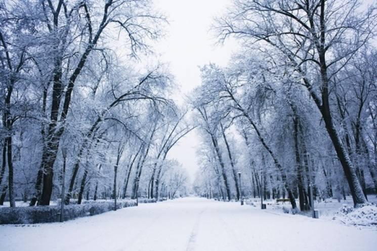 Села-музеї, Стоунхендж та диво-став: 12 коротких подорожей Запоріжжям, які прикрасять зиму