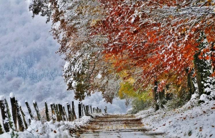 Для чого 30 листопада треба повалятися у снігу і всюди шукати трійки