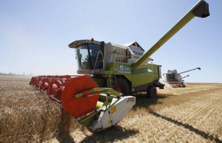 Україна готується зібрати рекордний за роки незалежності врожай