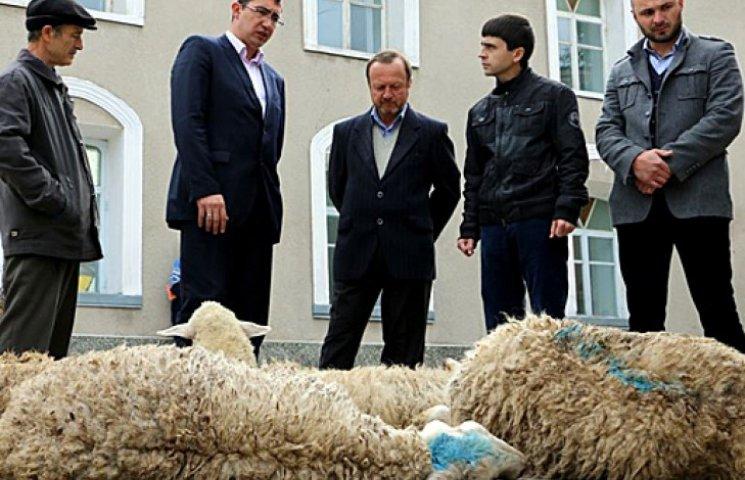 «Гоблин» погнал своего зама и 10 баранов на праздник мусульман