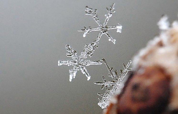 У Котовську на Одещині сипле перший сніг