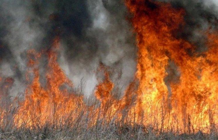 На Одещині вигоріло 14 гектарів сухостою