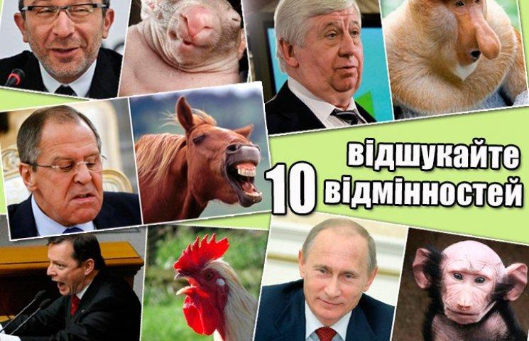 Политики и животные: Какие звери спят в Яценюке, Ляшко и Парасюке