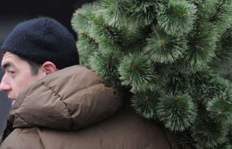 Мешканці Мелітополя продовжують викидати новорічні ялинки