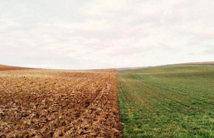 На Хмельниччині розкрили земельну оборудку на 13 мільйонів гривень