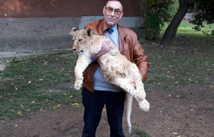 В Николаевский зоопарк привезли львенка из Южной Африки