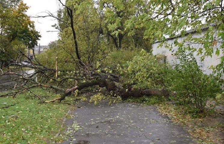 На Миколаївщині через негоду 53 населені пункти залишились без світла