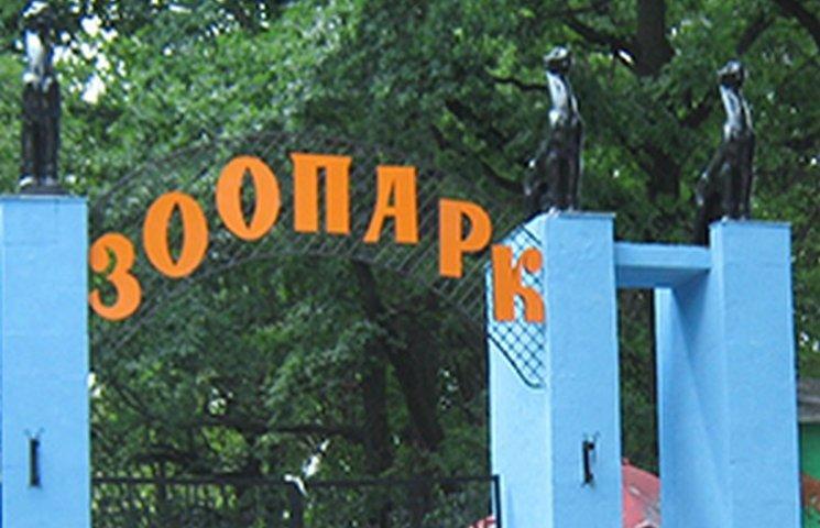Петиція про створення зоопарку ляже на стіл хмельницького мера