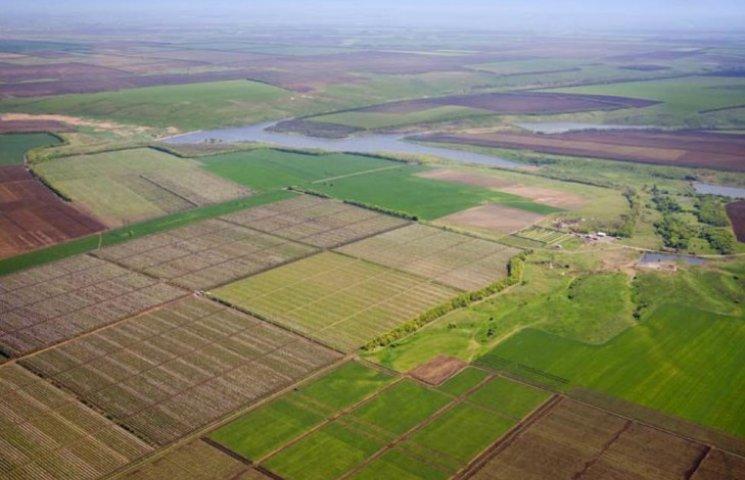 Всемирный банк посоветовал Украине, как быть с землей: 12 рекомендаций