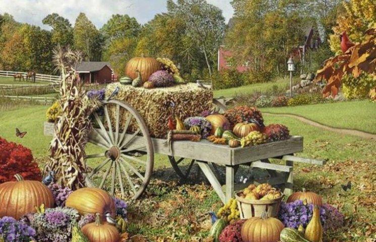 Цьогоріч на Хмельниччині десь в середньому на 20% зібрали більше врожаїв