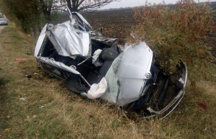 На Миколаївщині Scoda влетіла в дерево: водій загинув на місці ДТП