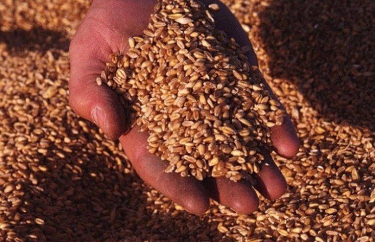 У вінницького фермера цілий місяць крали зерно
