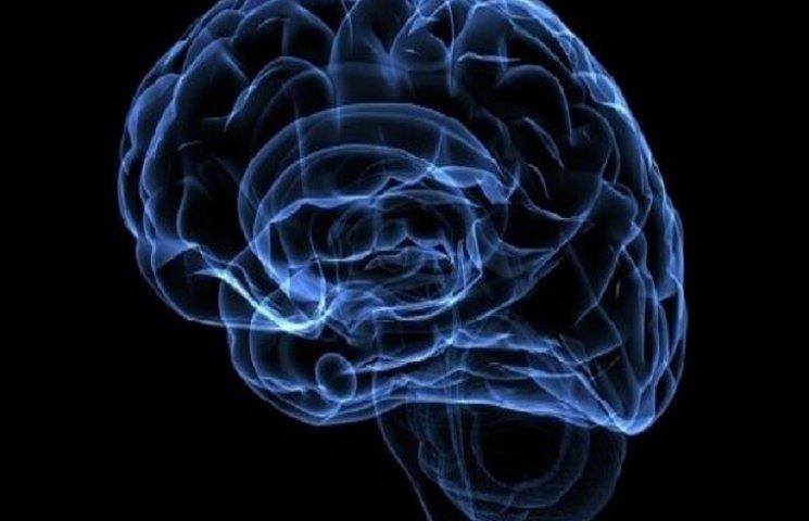 Вчені вияснили, чим відрізняється мозок педофіла та нормальної людини
