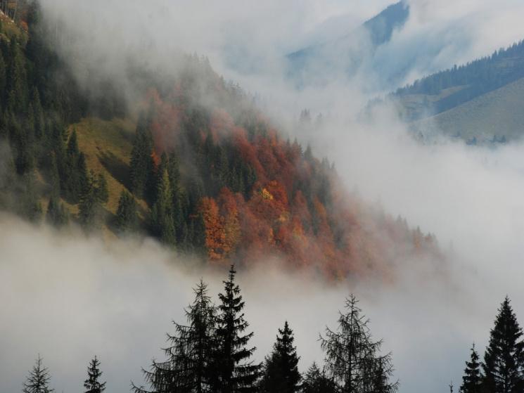 Синоптики застерігають про ускладнення погодних умов на5— 6 жовтня