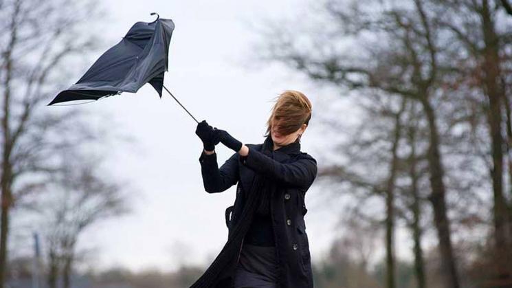 Может сдуть: синоптики предупреждают осильных порывах ветра вУкраинском государстве