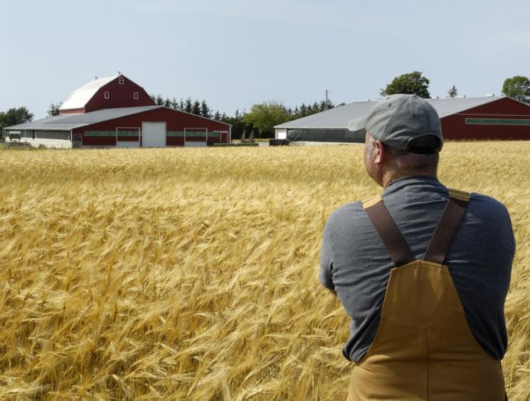19 червня пропонують відзначати як«День фермера»
