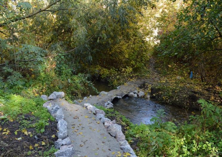 У Кропивницькому зробили екологічно чистими два струмки