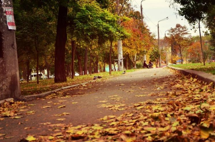 Синоптики склали прогноз погоди для Одещини