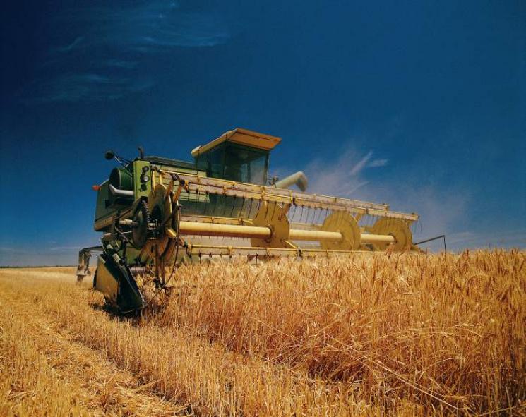 Аграрна Хмельниччина за врожайністю лідирує у державі