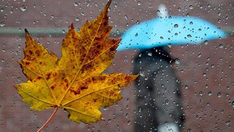 На останній робочий день тижня синоптики прогнозують Одесі дощ