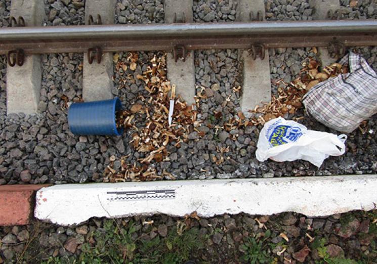 Поїзд «Львів-Москва» збив 67-річну хмельничанку