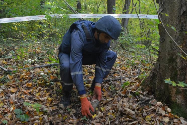 У лісосмузі у Глибоцькому районі знайшли артснаряд
