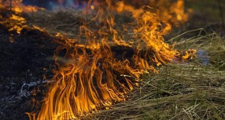 Штормове попередження: На Закарпатті до кінця тижня буде пожежонебезпечно