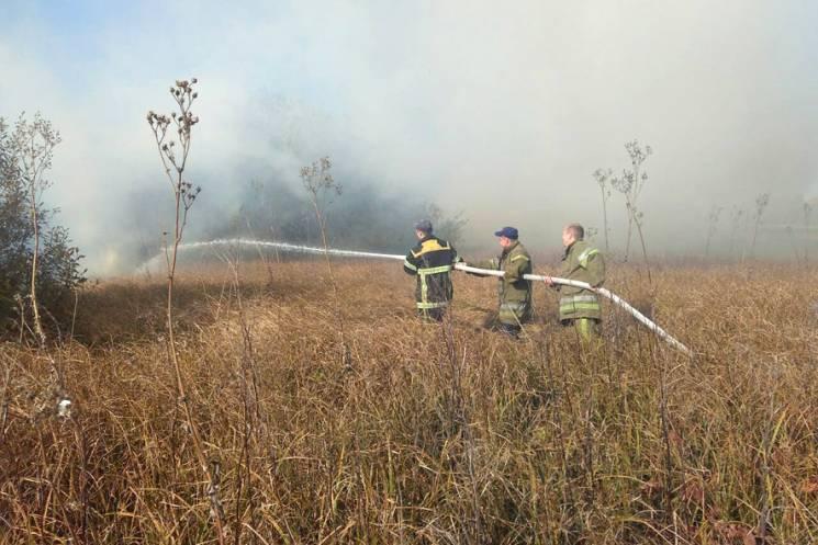 Полтавщина у вогні: Протягом доби сталися п'ять пожеж на відкритих територіях (ФОТО)
