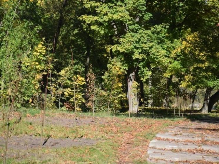 На Полтавщині у Нових Санжарах заклали Алею миру (ФОТО)