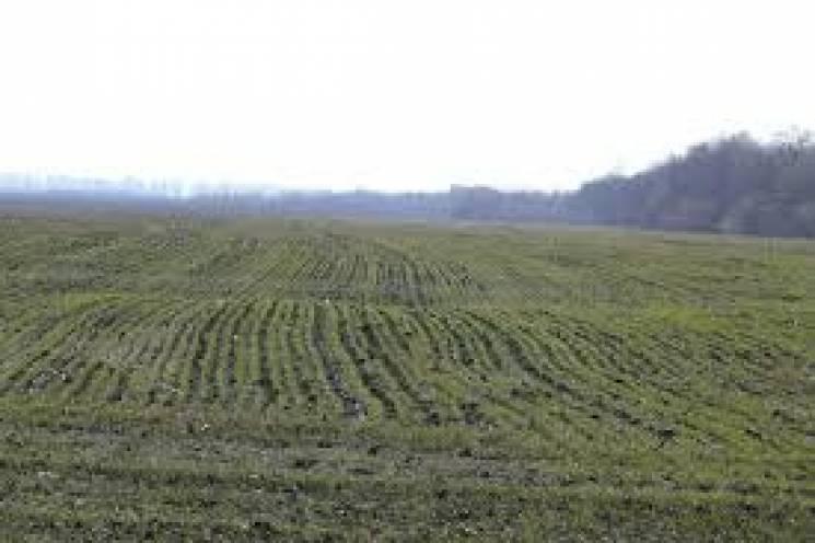 На Хмельниччині навчальному закладу повернули землю вартістю майже сім млн грн