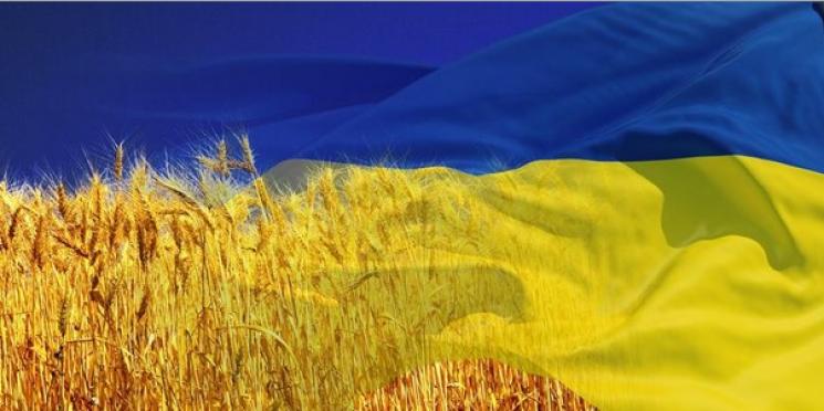 У виконкомі Миколаєва посадовці відмовилися виконувати гімн України
