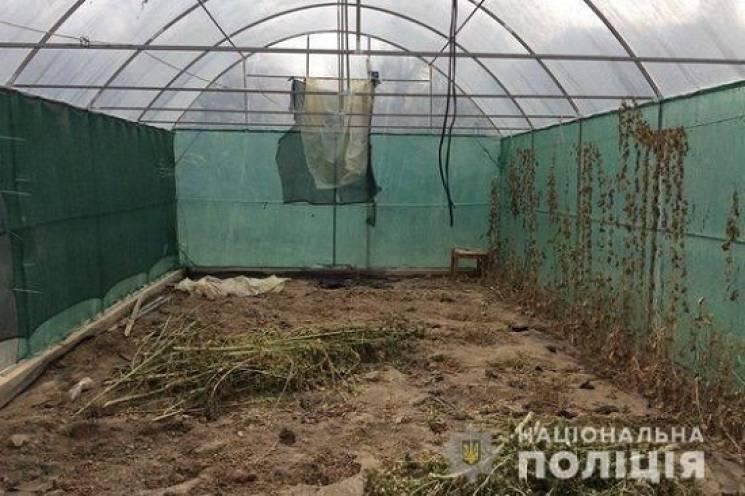 Наркозлочинця з Мукачева засудили до майже десяти років ув'язнення
