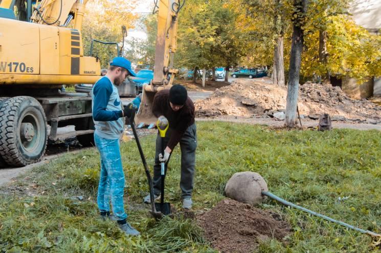 У Вінниці продовжують озленювати двори (ФОТО)
