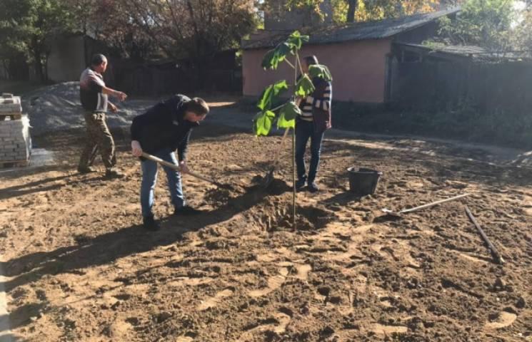 Мукачівці засадили парк на Валленберга деревами (ФОТО)