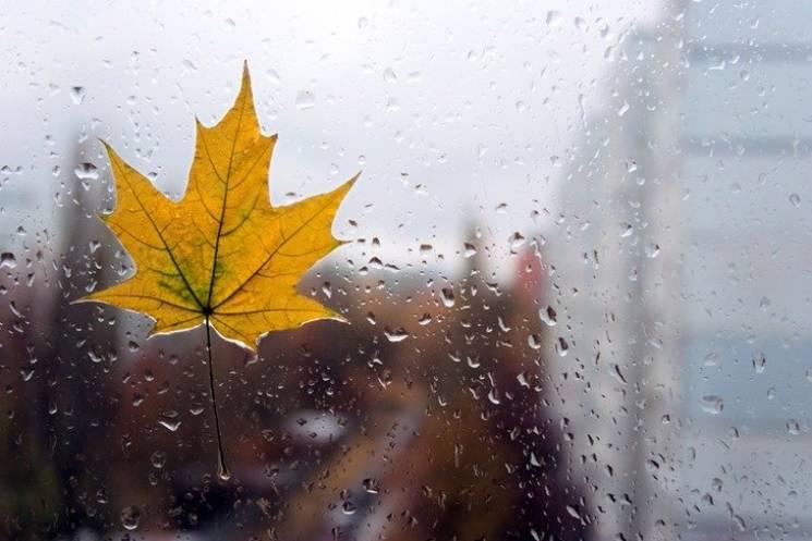 Тепла осінь закінчилась: Відсьогодні в Україні похолоднішає