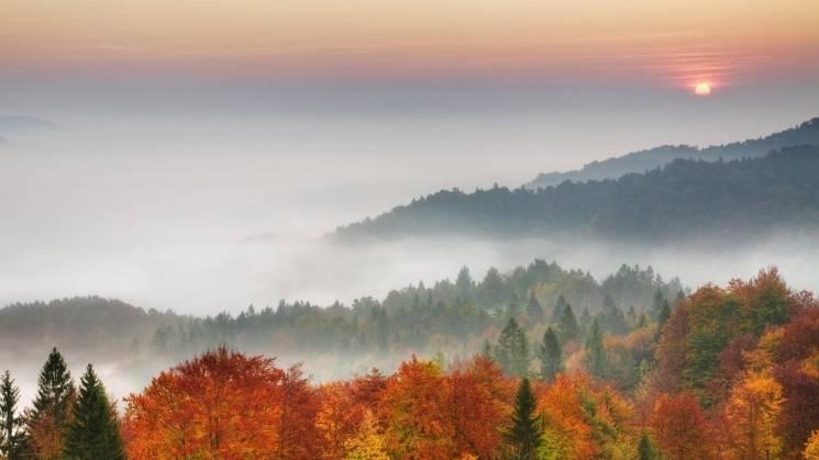 До кінця доби Україну огорне туман: Видимість до 200 м