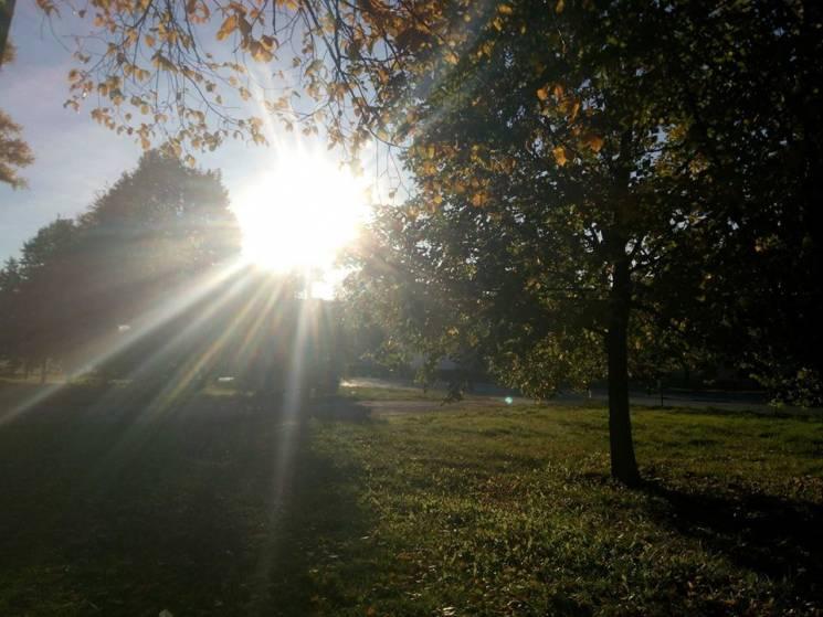 """""""Грайливе"""" сонце: Якої погоди чекати у Черкасах 1 листопада"""