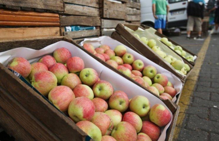У ЄС оцінили втрати від продовольчого ембарго РФ у 5 млрд євро