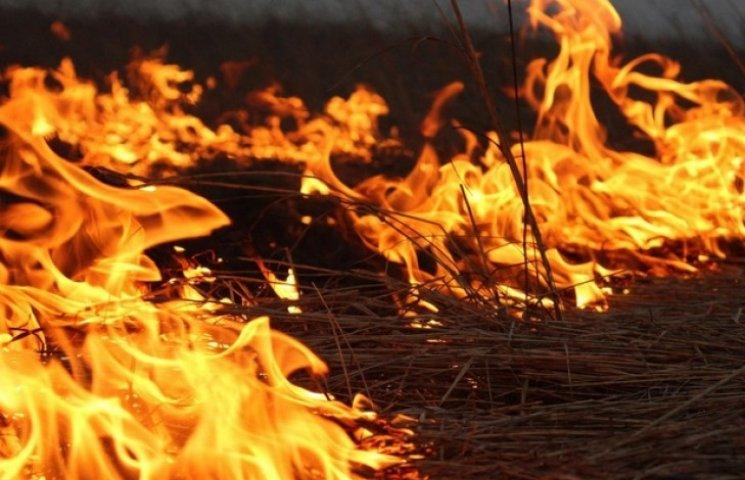 У Кременчуцькому районі згоріло 20 тонн сіна