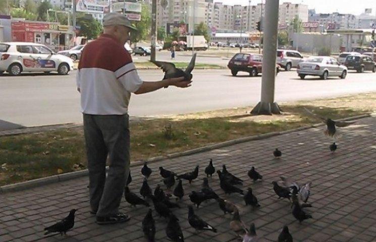 В Одесі живе дивовижний старець, що ходить в оточенні голубів