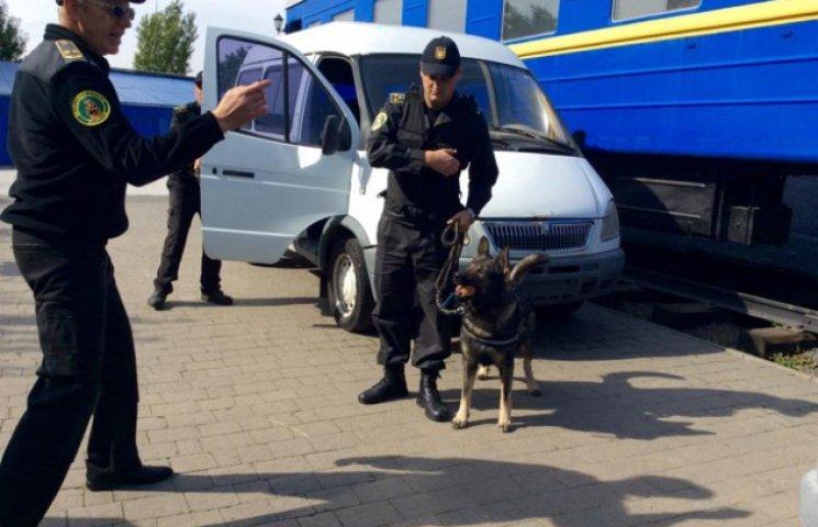 На Хмельниччині вчаться цькувати терористів собаками