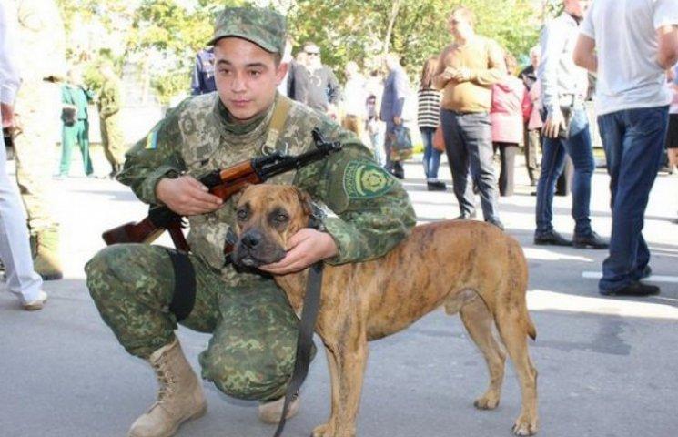 """Бійці батальйону """"Вінниця"""" привезли з АТО врятованого стафа Тайсона"""