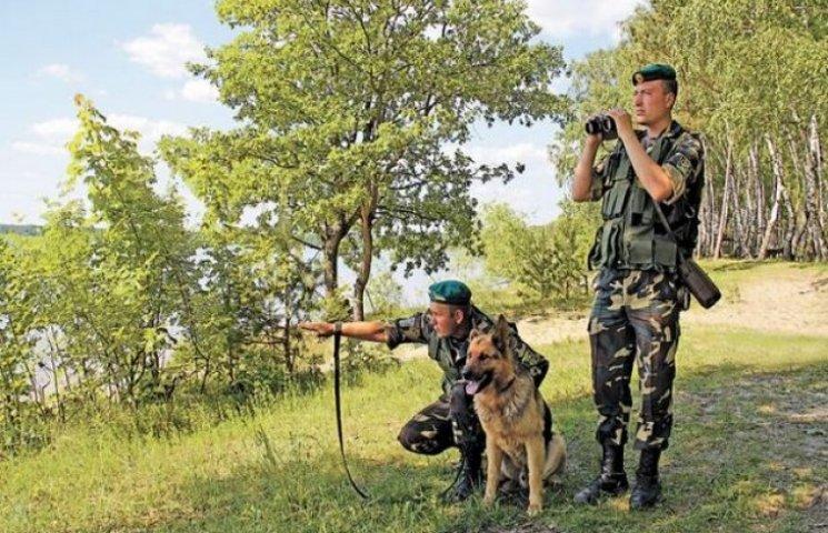 Собака на кордоні з Польщею у Львівській області затримав озброєного німця