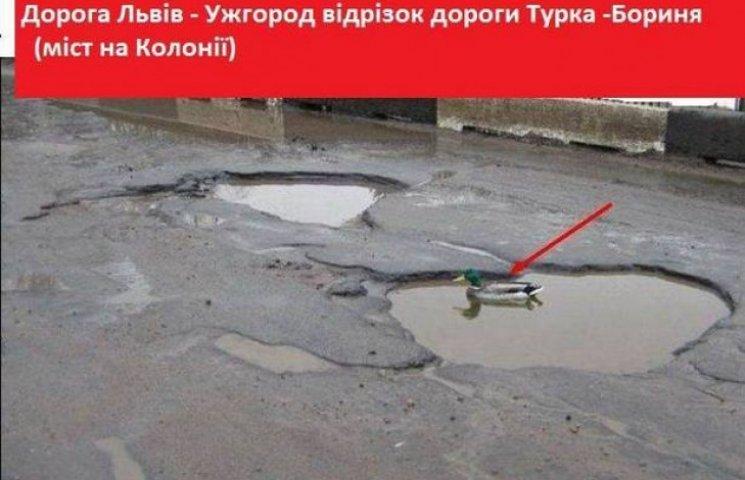 Як в соцмережах глузують з ям на трасі Львів-Ужгород