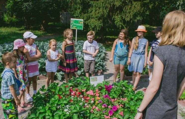 З городу, який дітлахи влаштували в центрі Вінниці, збиратимуть врожай