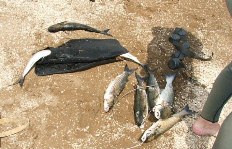 На Миколаївщині браконьєр ловив кефаль під час нересту