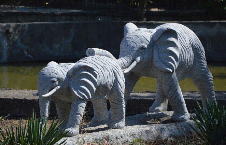Как звери в Николаевском зоопарке поздравляли горожан с Днем города